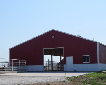 Cattle Sheds in Iowa from Greiner